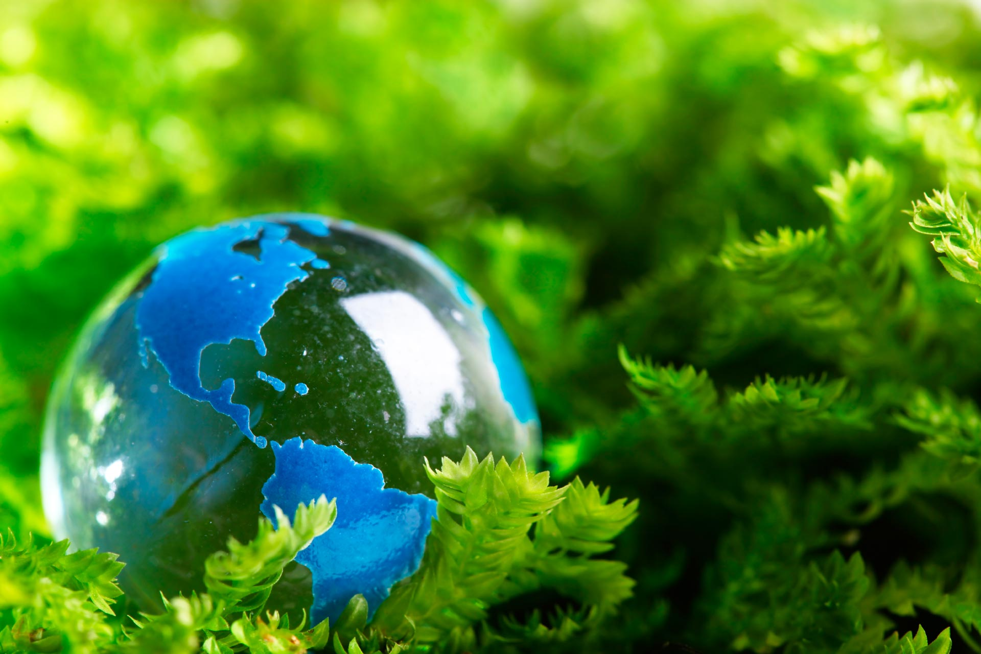 environmental problems derived from modern societies environmental sciences essay The role of science and technology in society and  the most pressing social and economic aspects of modern science  issues - science and society .